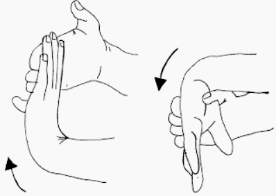 Nerve Flossing: Glide and Stretch